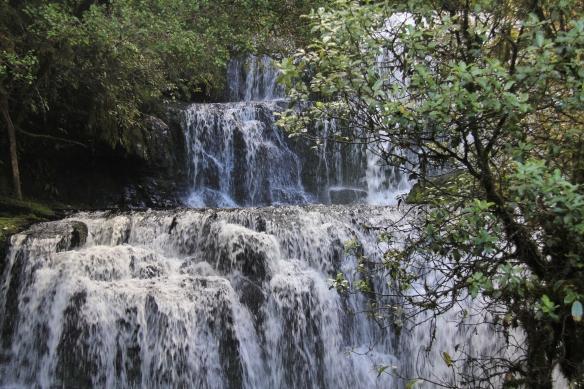 Purakaunui Falls (5)