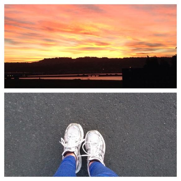 Running Dunedin NZ