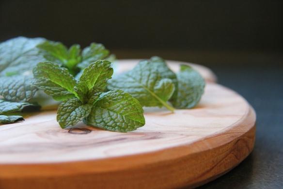 fresh mint & chocolate slice - chelsea winter